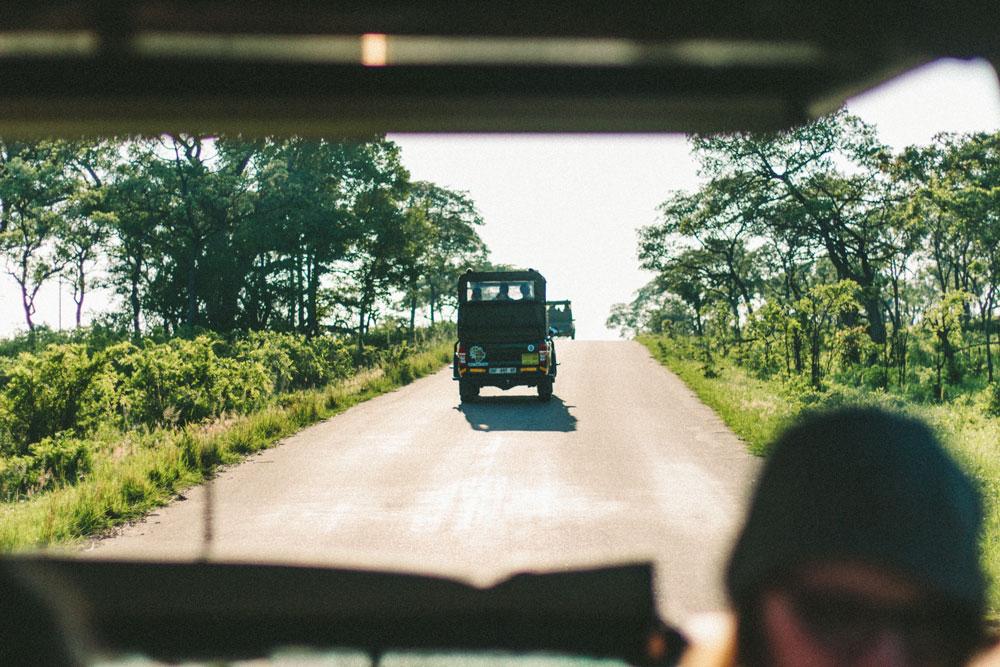 Diario de una VIP Maiden: Compañera de viaje